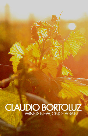 citizen-la-cover-claudio-bortoluz-b